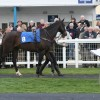 Shares available in yesterday's winner Black Narcissus