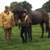New Horses Find New owners as it gets busy at West Buckland