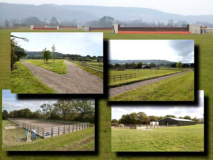 gallop-and-training-facilities-at-alexandra-dunn-racing