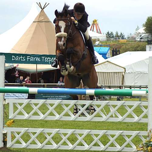 tom-dunn-show-jumping-2
